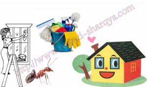 طرق تنظيف منازل مستخدمة